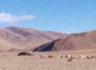 Indus River trek